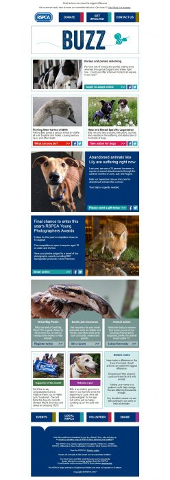 Charity Email - RSPCA