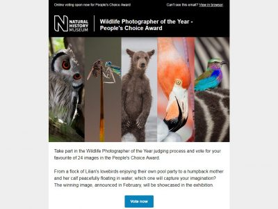 Charity Email - Natural History Museum