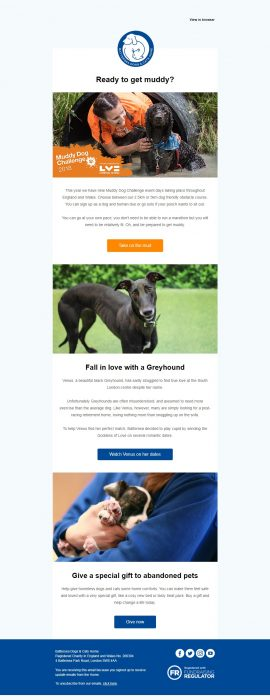 Charity Email - Battersea Dogs & Cats Home
