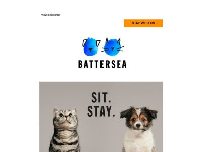 Charity Email - Battersea